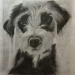 Dog Portrait, Moira Squier