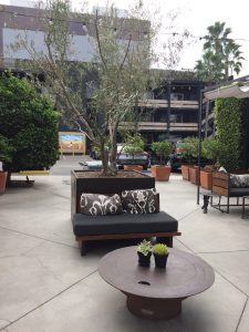 Farmers Daughter Hotel Courtyard