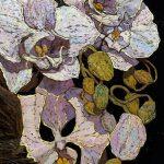 """Embodiment No. 11"" Floral Close-up, Denis Sarazhin"