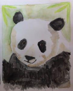 Liam B.'s Watercolor Panda Study