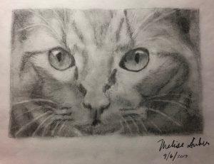 Melise G.'s Graphite Cat Portrait