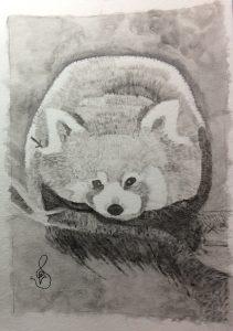 Nihal D.'s Watercolor Red Panda Tone Study