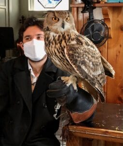Raptor Events presents Ollie the Eurasian Eagle Owl at Pastimes for a Lifetime