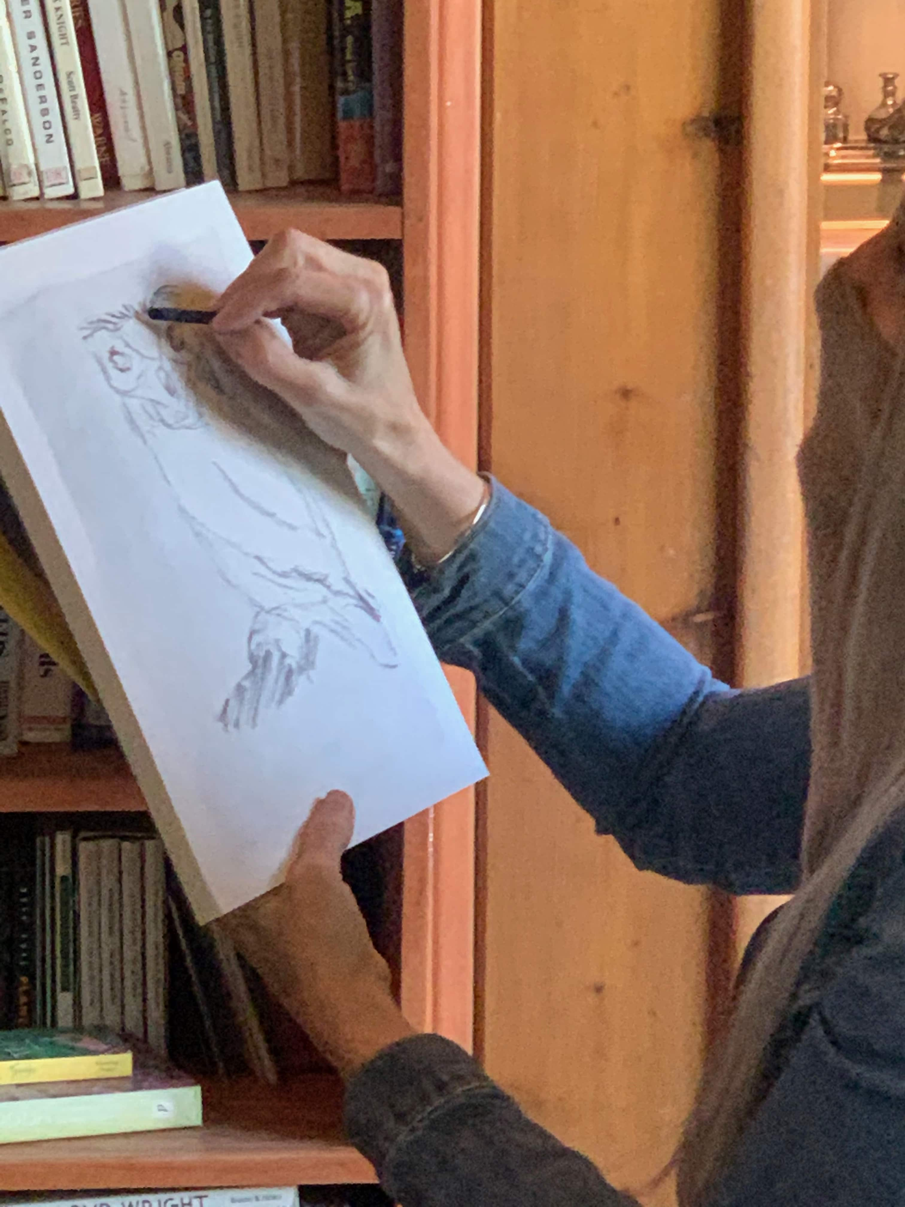 Pastimes students safely sketch Ollie the Eurasian Eagle Owl